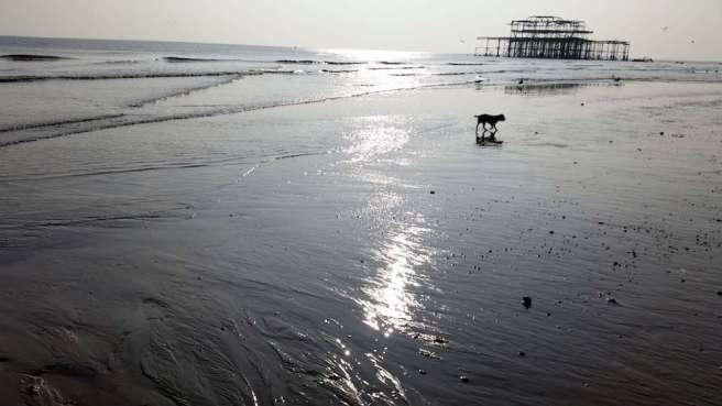 Brighton low tide